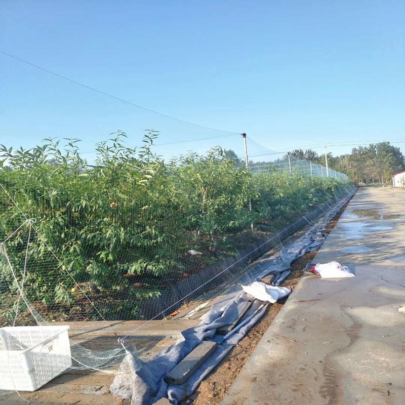 Vegs Crop Protection