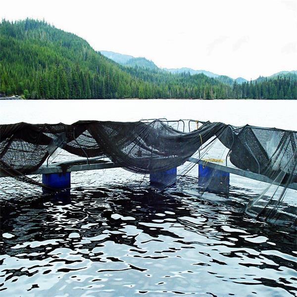 Fish Net Pens