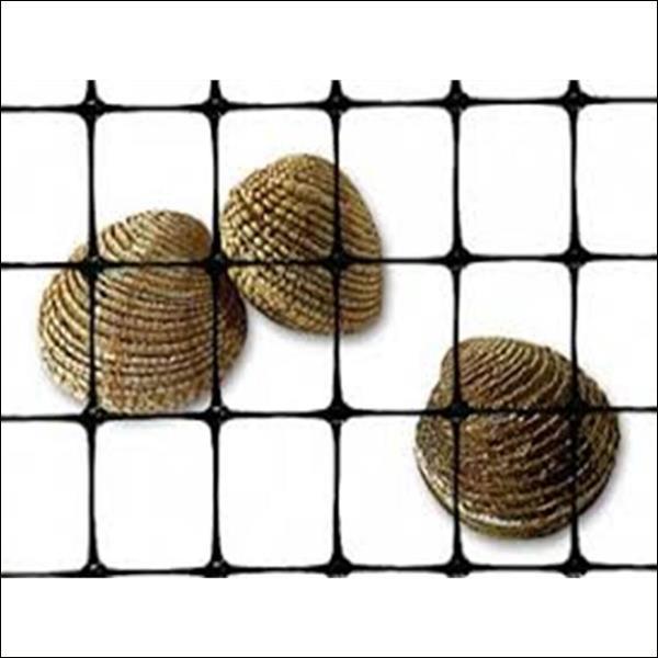 Clam Netting