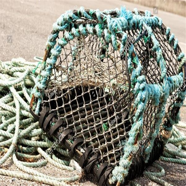 D-Shaped Crab Trap