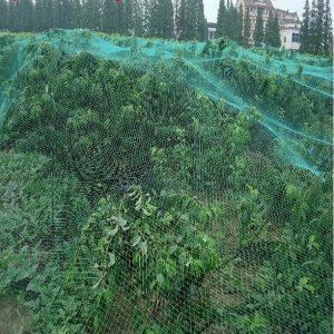 Gardening Pest Anti Bird Crop Net