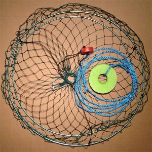 Collapsible 2 Ring Crab Net