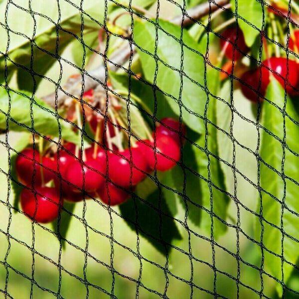 Anti Bird Net Netting - Black