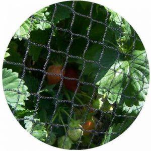 Anti Bird Fruit Crop Protection Netting