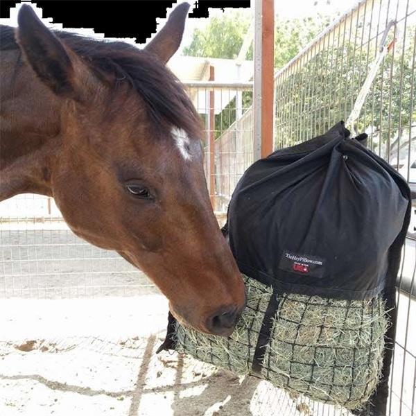 Hay Pillow Slow Feed Hay Bag
