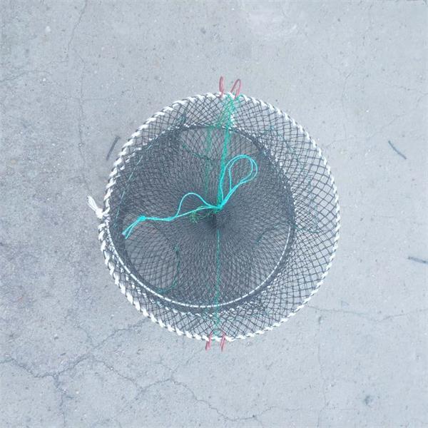 Foldable Crab Shrimp Trap Net