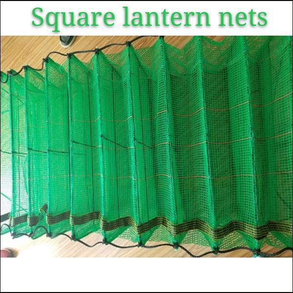Square lantern nets for scallop farming