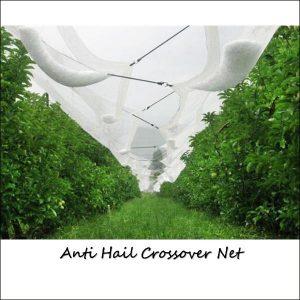 Anti Hail Crossover Net